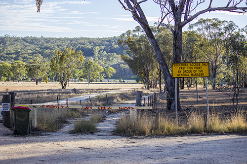 access track to the observation hide - Lake Inverell