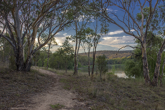 The Woodland Walk - Lake Inverell